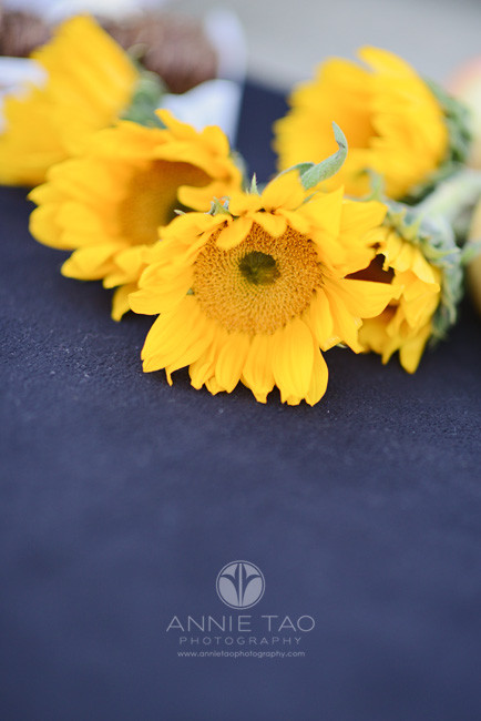 Bay-Area-styled-photography-sunflowers-laying-on-blanket