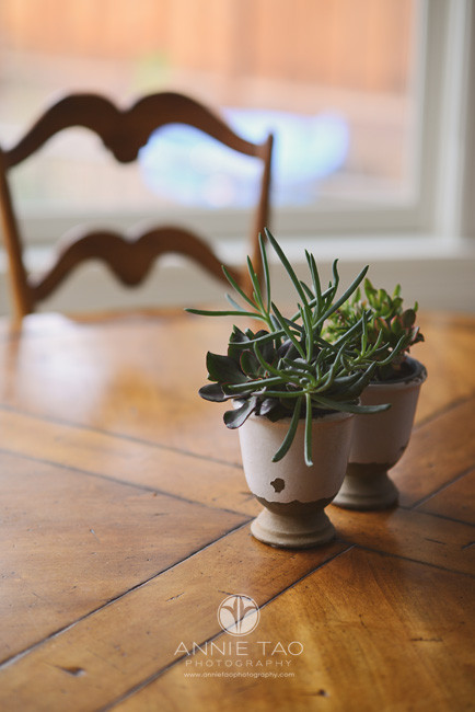 Bay-Area-Palo-Alto-lifestyle-photography-succulents-on-dining-table