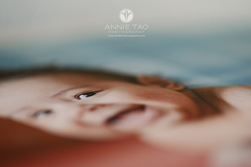 ATP-Client-Order-10x10-Fine-Art-Book-interior-page-closeup