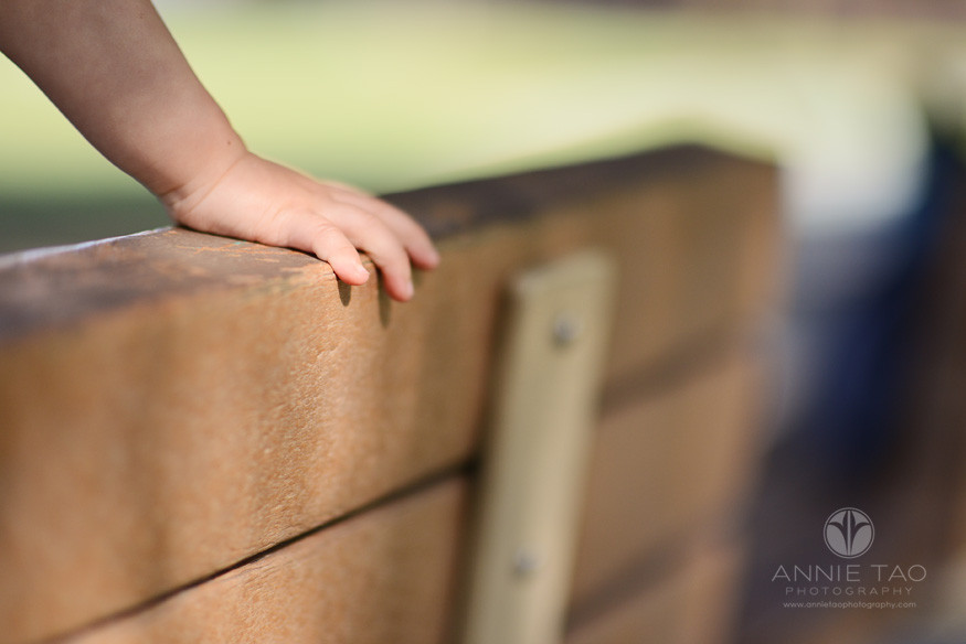 South-Bay-lifestyle-baby-photography-hand-holding-bench