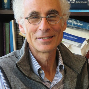 Dr. Clifford Rosen