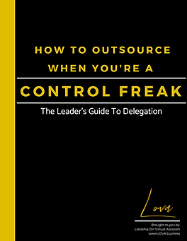 The cover of The Guide titled: How To Outsource When You're A Control Freak The Leader's Guide To Delegation