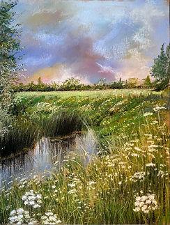 Wiltshire Meadowlands