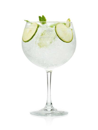 Gin Glass Plain Design