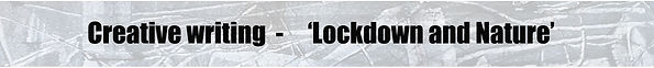 Page title - Lockdown and Nature.jpg