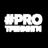 Мини лого.png