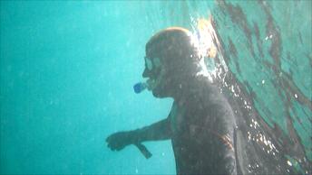 La pagina Web de El Blanco de inmersion