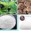 Thumbnail: Dr.Lola Jeju nature Ba Cleasing sponge - Waterdrop (charcoal) - Renewal