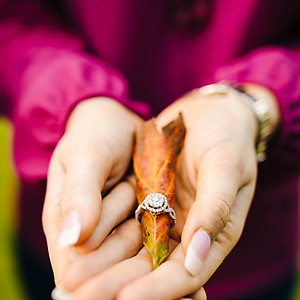 Hamil Engagement