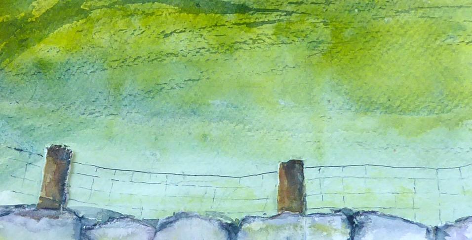 A Wee Wall near Catterline