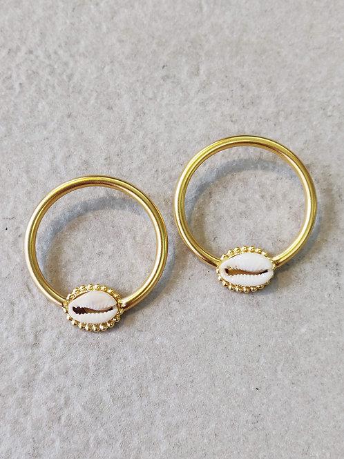Brass Shell Hoops