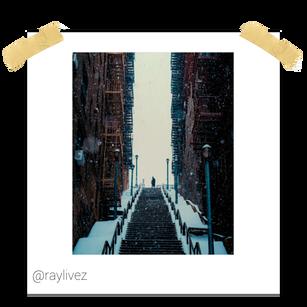 raylivez