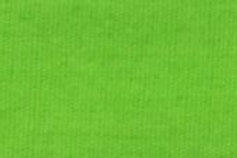 Premium Quilters Percale (homespun) Lime