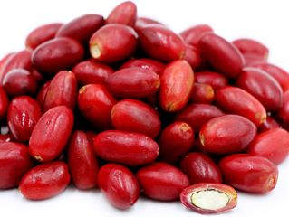 Miracle Berry Makes All Food Taste Sweet