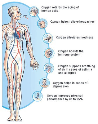 What oxygen does in the body