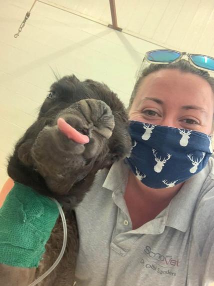 Dr. Sanders & Camel Baby.jpg