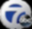 WXYZ_2012_Logo.png