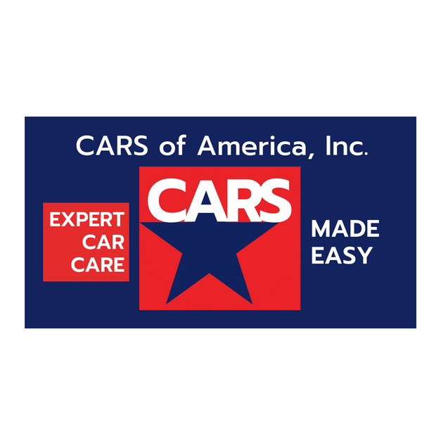 Logo: Expert Car Care Made Easy campaign