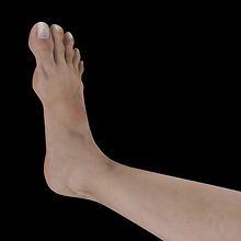 foot_2.jpg