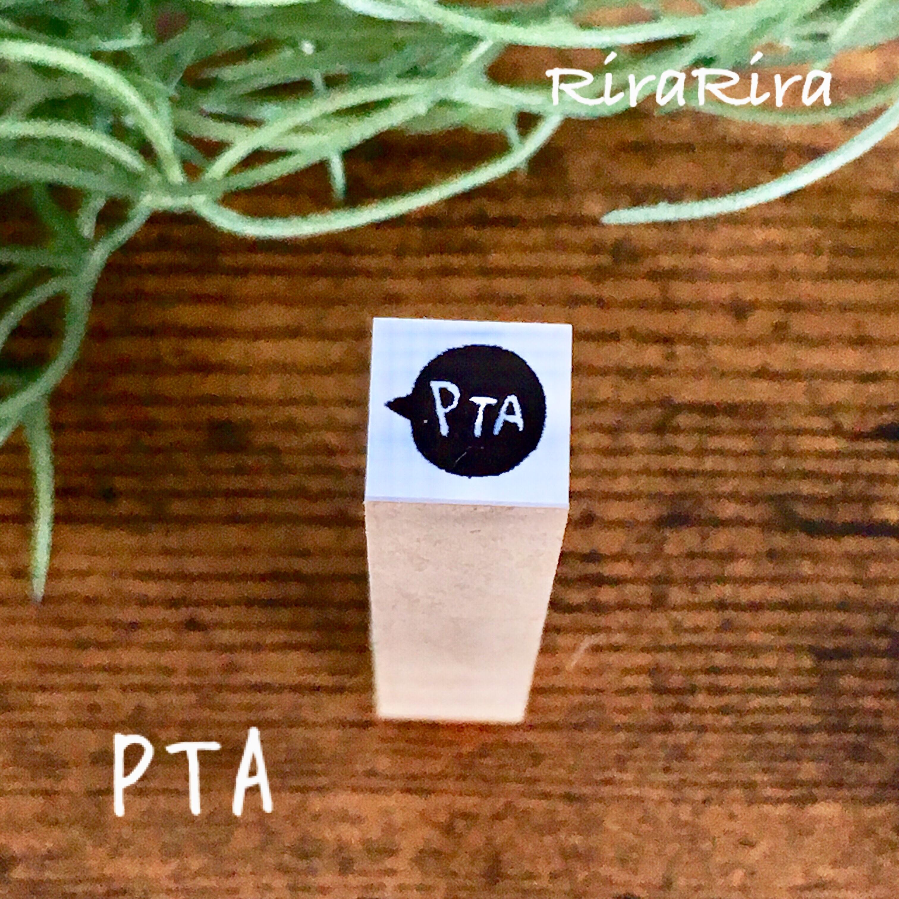 R145【PTA】スケジュールはんこ*10㎜×10㎜_1