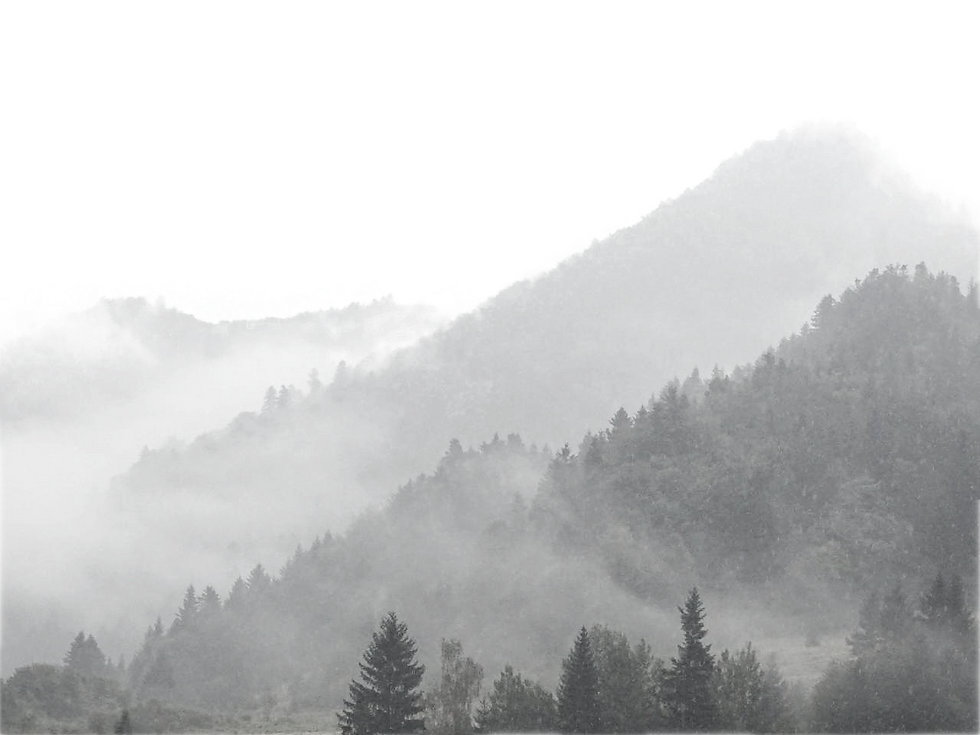 mountains-in-the-fog_edited_edited.png