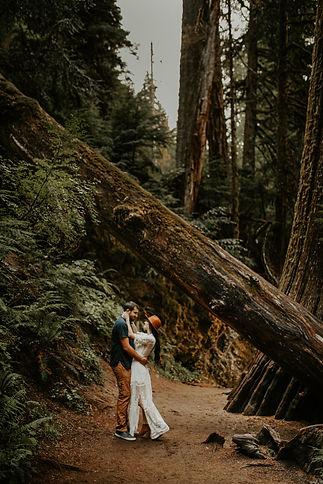 Washington-Hiking-Adventure-Elopement.jp