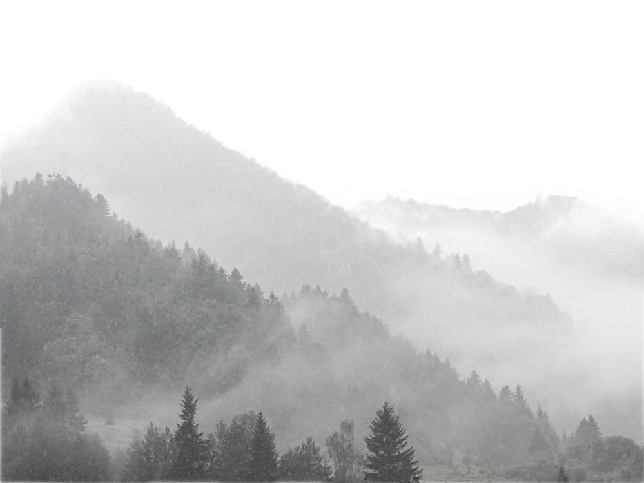 mountains-in-the-fog_edited.png