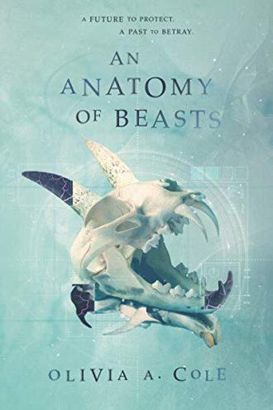 An Anatomy of Beast