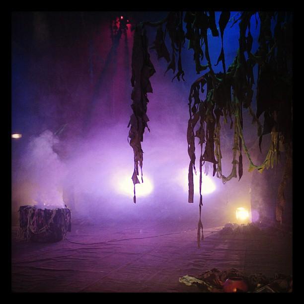A Floresta vista da Coxia - Teatro Alfredo Mesquita - Ago/2013