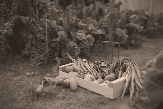 Légumes de saison en Bretagne