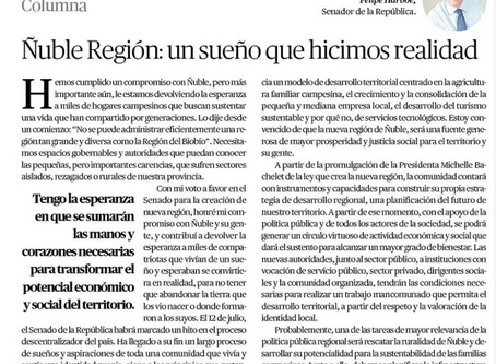 Ñuble Región: un sueño que hicimos realidad
