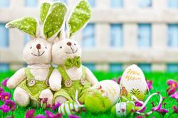 Osterhasen-Paar_auf_der_grünen_Blumenw