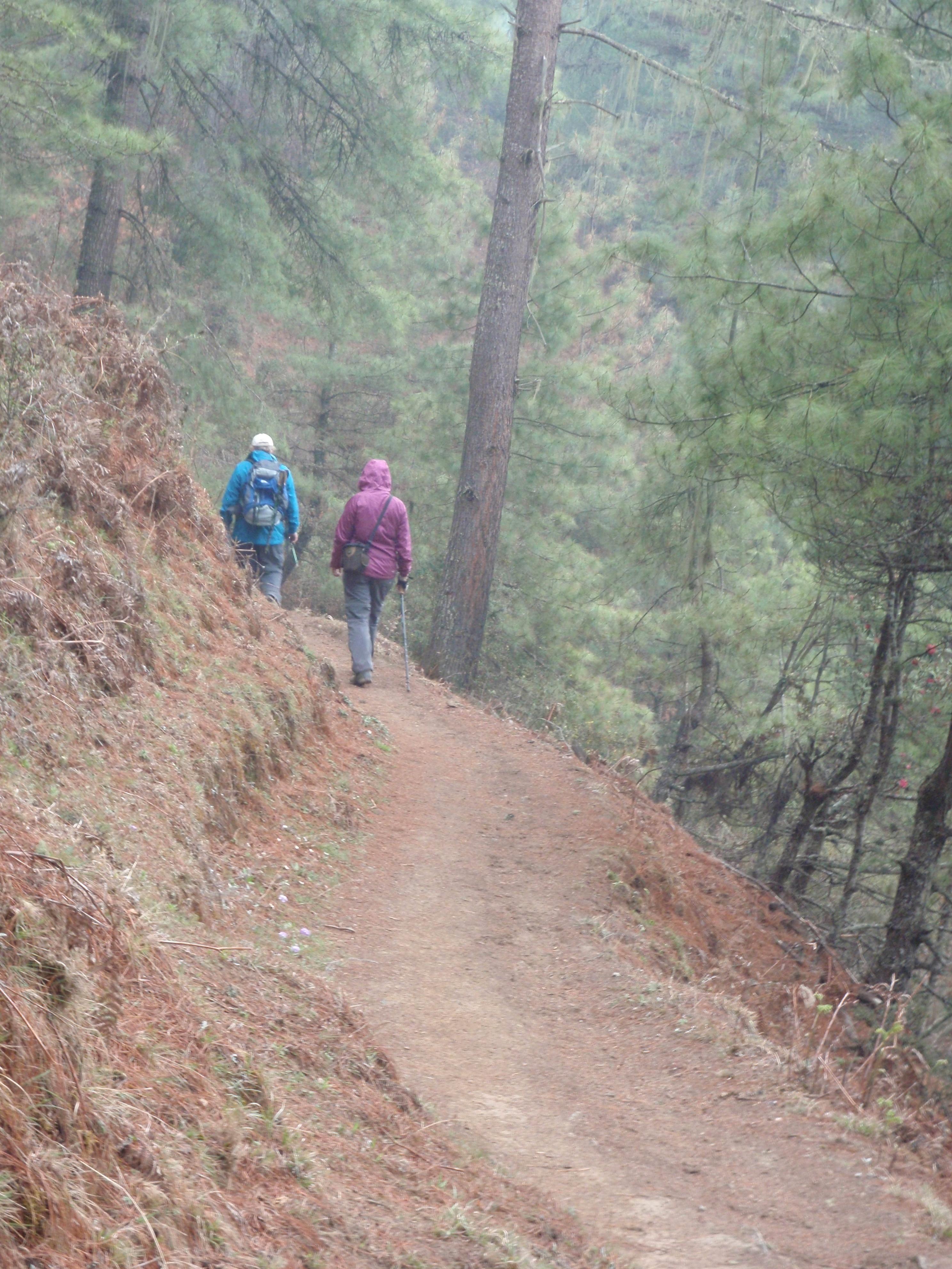 Bhutan walking.jpg