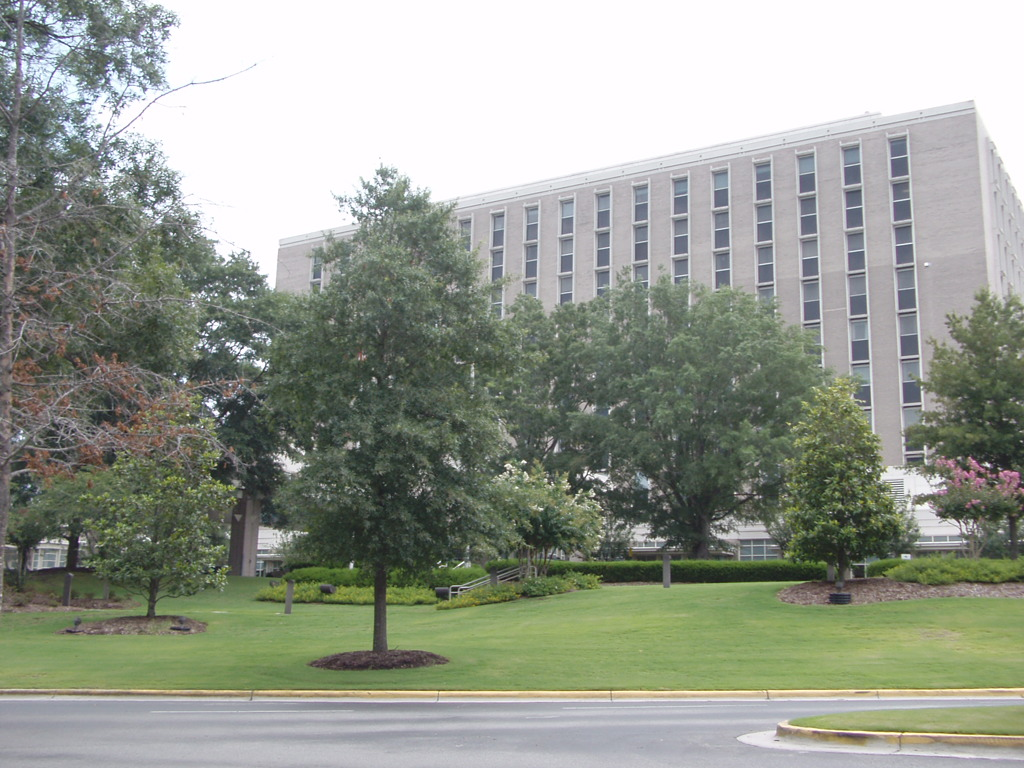New Hanover Regional Medical Center, NC_캡스톤브릿지.JPG
