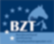 bzt-logo-ret.png