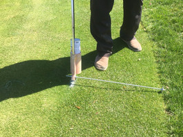 Scalping Collars to Increase Efficiency on Putting Greens