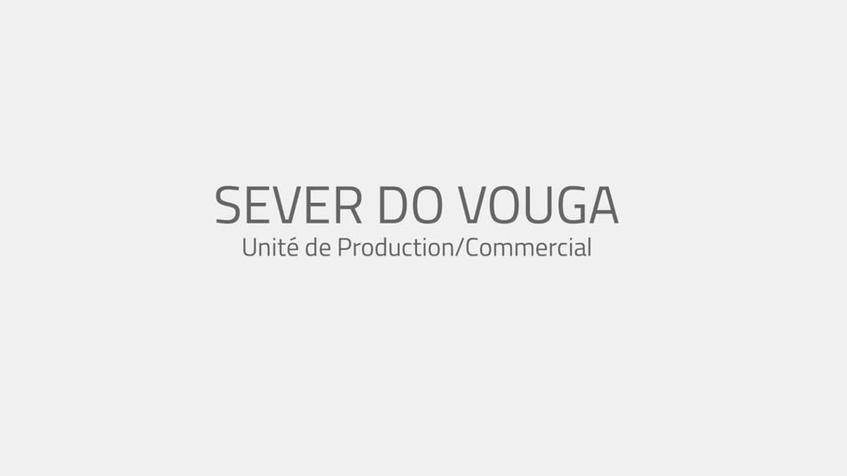SEVER DO VOUGA.jpg