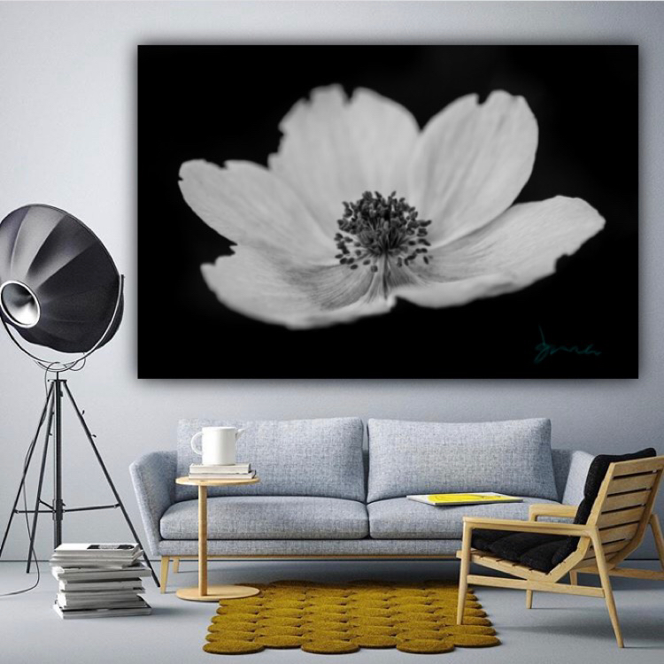 black and white flower wall decor