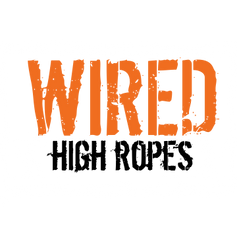 Copy of wired (1).png