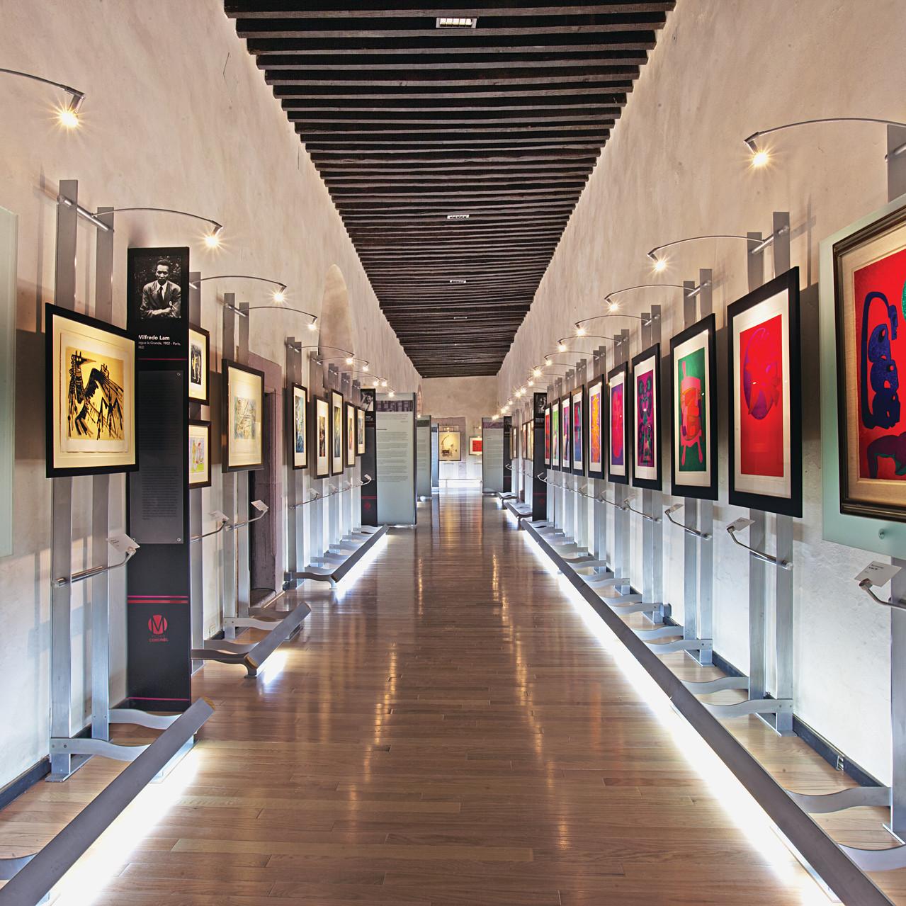 Museo Pedro Coronel IG IMG_3788