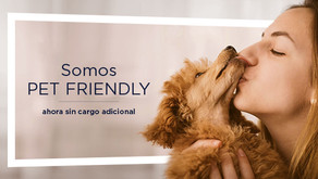 NH HOTEL GROUP Y SU MODALIDAD PET FRIENDLY