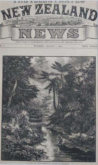 Hendersons Creek Auckland - Original Wood Engraving C. 1885 NZ News