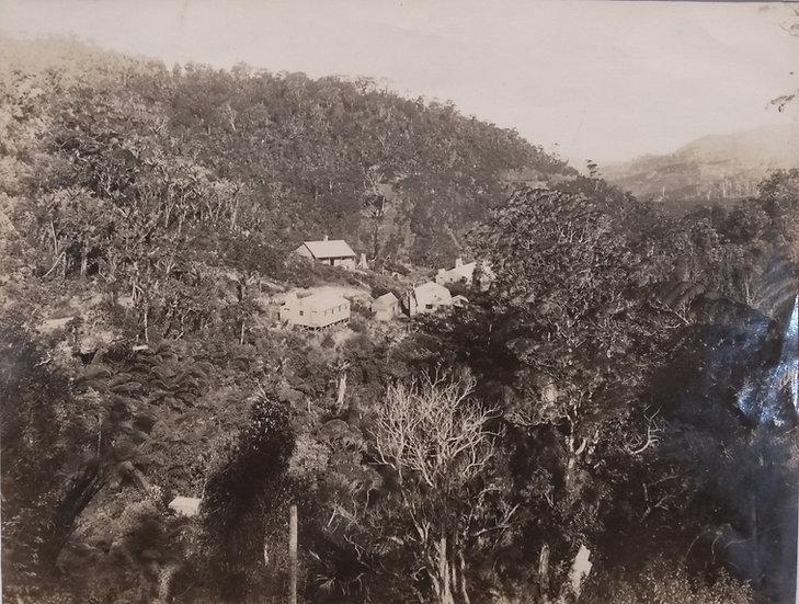 Photograph of the Waitakeres Auckland Circa 1900 by Winkelmann. Albumen print