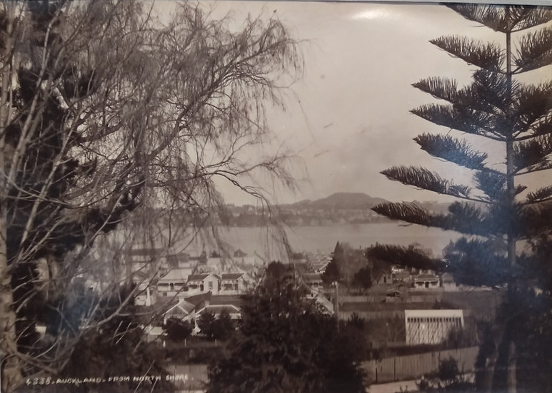Photograph of Auckland from Devonport (rare) by Burton Brothers circa 1895