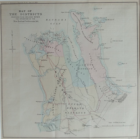 Map of Auckland Districts 1864 Lithograph