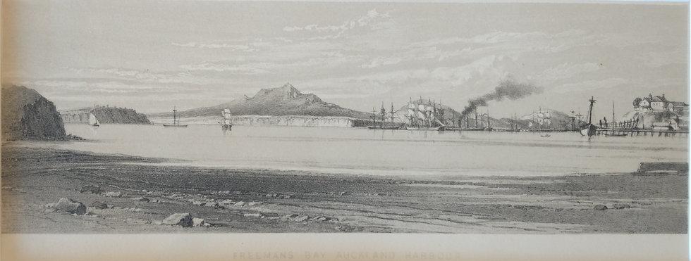 Freemans Bay Auckland Harbour - Barauds Lithographs Circa 1877