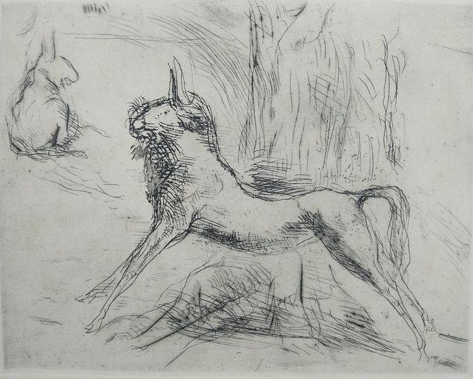 Antelope - Fritz Wrampe German Original etchings of Animals. Circa 1930