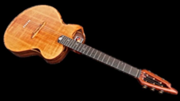 Guitare EVOLUTION FOLK de Thierry RESTA Luthier guitares acoustiques