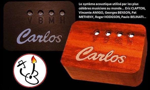 Thierry RESTA Luthier (2).jpg