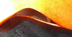 L'ouïe latérale optimise les vibrations de la table.